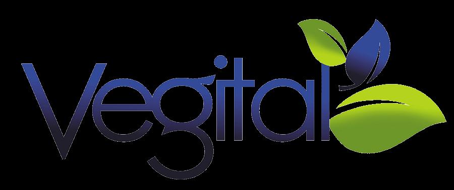 Vegital UK – Soy milk maker